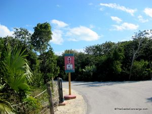 Castaway Cay's bike path