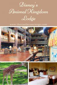 Stay and Play at Disney's Animal Kingdom Lodge