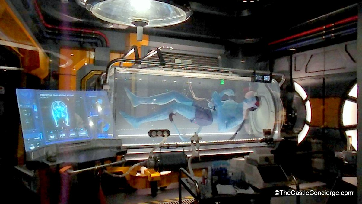 Flight of Passage Queue Pandora The World of Avatar