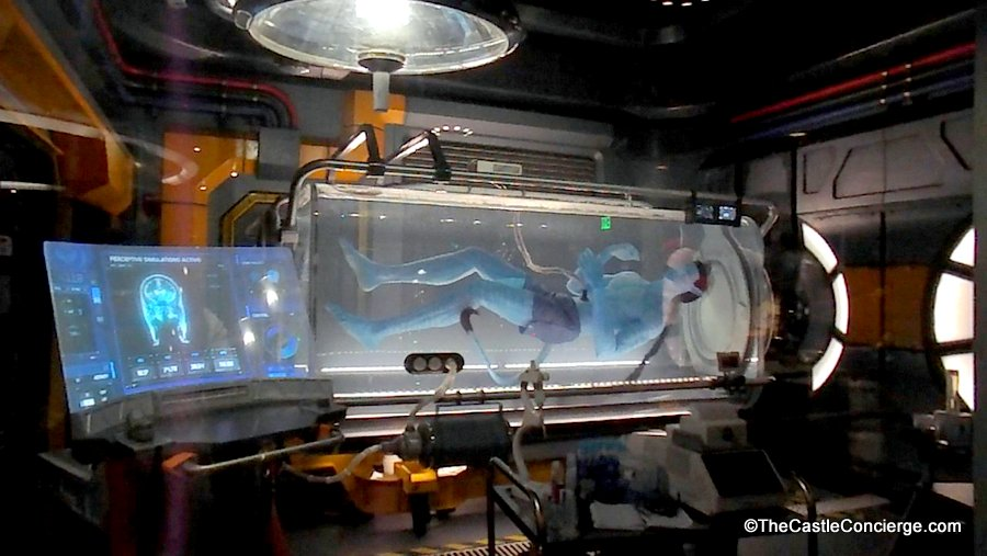 Flight of Passage Queue in Pandora The World of Avatar.