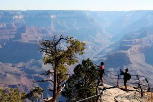 Taking photos at the Grand Canyon