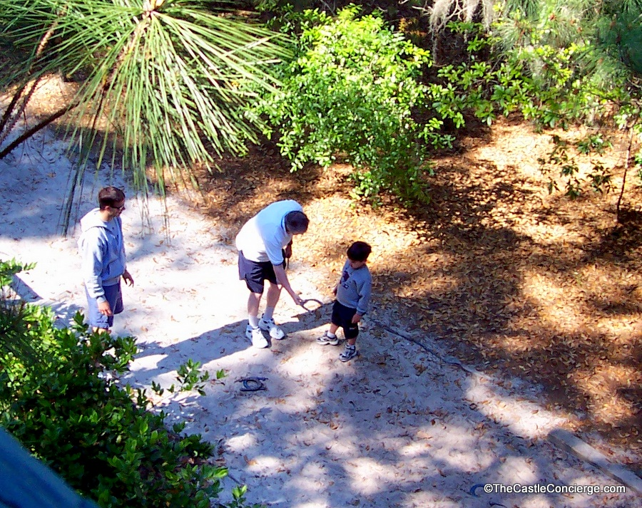 Disney's Hilton Head Island is perfect for a getaway with extended family.