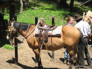 Horseback Riding at Bill Cody Ranch in Wyoming.