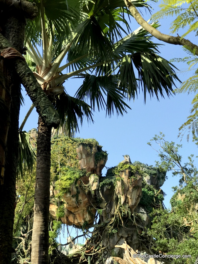 Lush landscaping and floating mountains at Pandora World of Avatar WDW