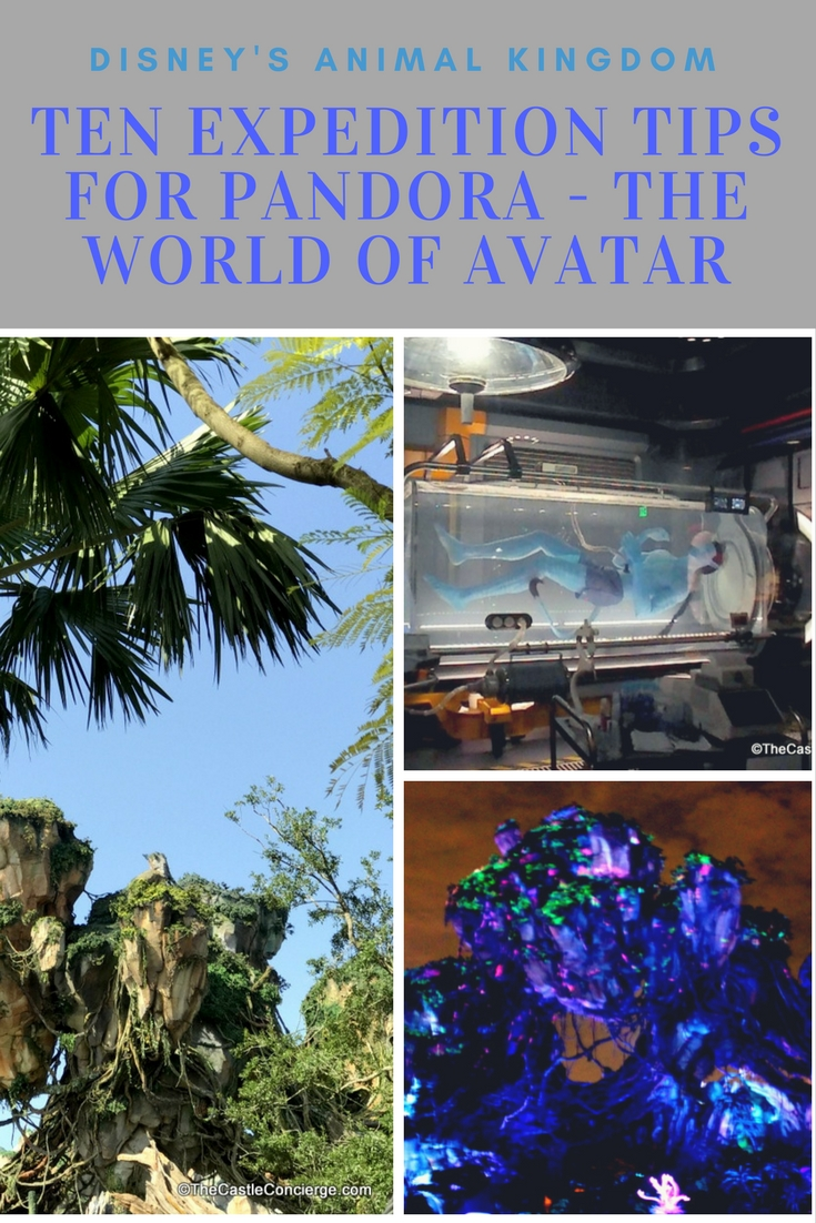 Top Ten Expedition Tips for Pandora The World of Avatar