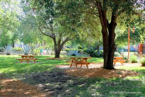 Picnic Tables at All-Star Music Resort. Picnic during the springtime at Walt Disney World.