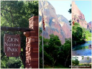 Surrel Places. Zion National Park is a contrast of red steep cliffs and green forested trails.