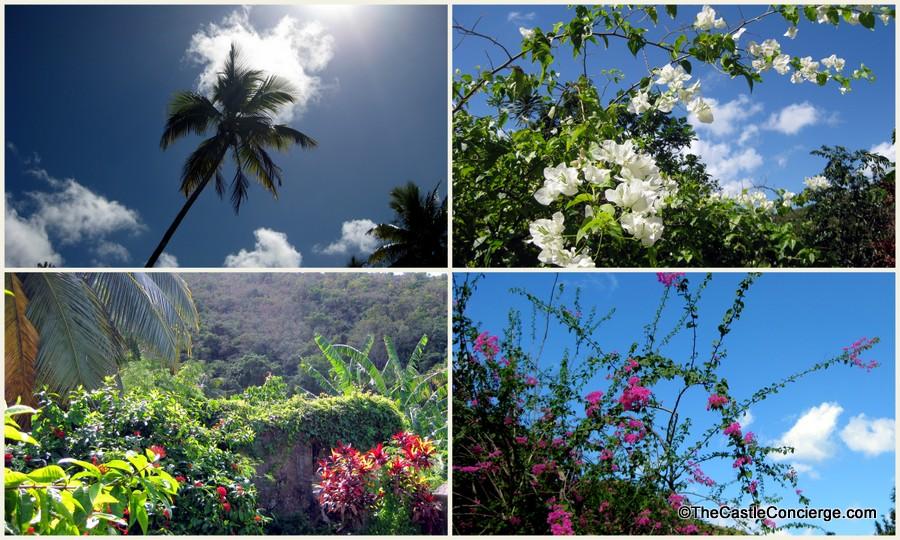 Surreal Places. Tropical Landscaping at Little La Grange Plantation House St Croix, US Virgin Islands