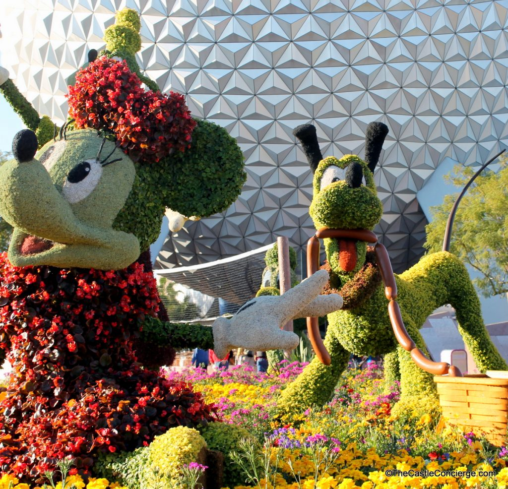 Minnie and Pluto Topiaries at the spring Epcot International Flower and Garden Festival.