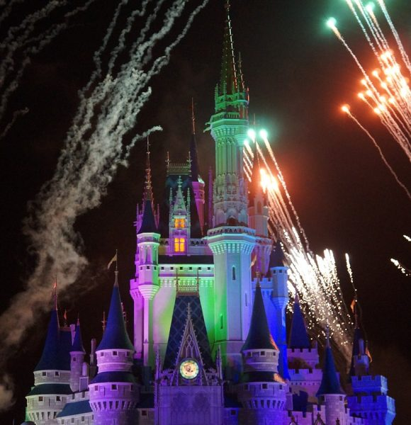 In Remembrance of the Magic Kingdom's Wishes Fireworks