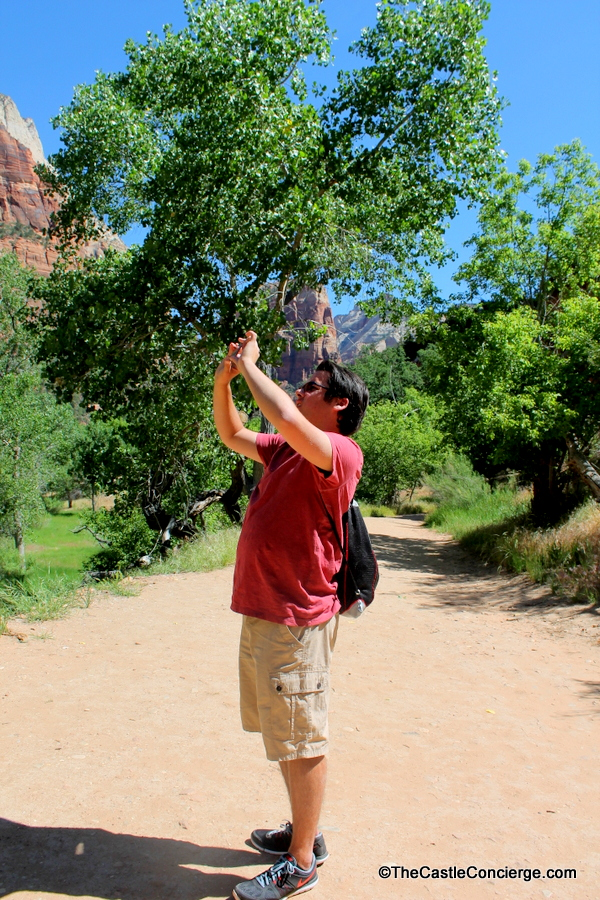 Zion National Park Top Teen Vacation in a Surreal Place.