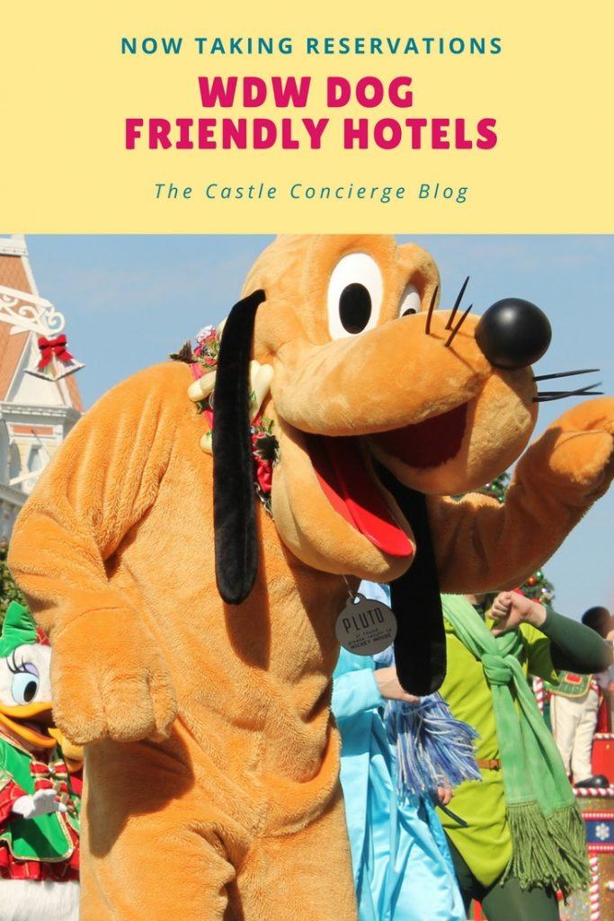 disney dog friendly hotels at Walt Disney World